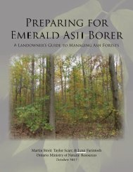 Preparing for Emerald Ash Borer: A Landowner's Guide to Managing ...