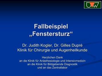 """Fallbeispiel """"Fenstersturz"""""""