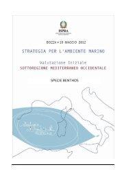 4.3.5 SPECIE_Benthos_MEDOCC.pdf - La strategia marina - Ispra