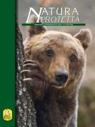 N° 1 2008 - Parco Nazionale d'Abruzzo Lazio e Molise