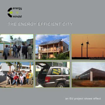 The Energy Efficient city - energy in minds