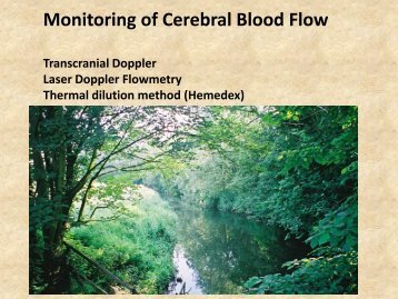 Monitoring of Cerebral Blood Flow