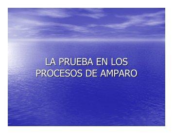 LA PRUEBA EN LOS PROCESOS DE AMPARO