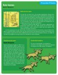 Seis leones - Page 2