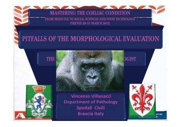 PITFALLS OF THE MORPHOLOGICAL EVALUATION