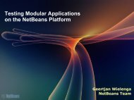 Testing Modular Applications on the NetBeans Platform