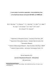 A case study of convective organization into precipitating lines in the ...