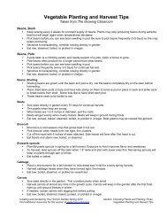 Vegetable Planting & Harvest Tips.pdf