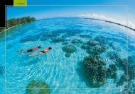 essai 1 - Direction de l'environnement de la Polynésie française