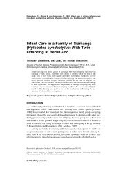 Infant Care in a Family of Siamangs - Gibbon Research Lab