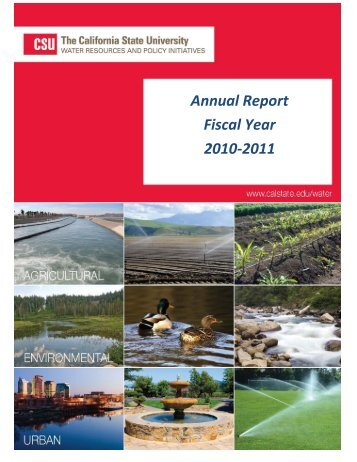Annual Report Fiscal Year 2010-2011 - ICWT