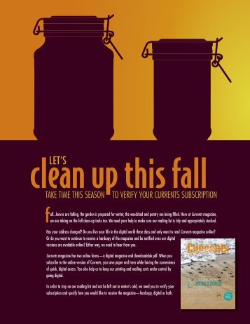 Let's Clean Up This Fall