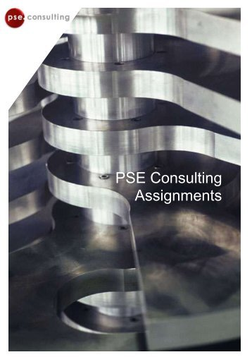 PSE Consulting Assignments