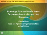 (FAO) (PDF, 619 kB) - The Water, Energy and Food Security Nexus