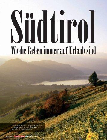 NEU - Petra Bader - Weinberatung