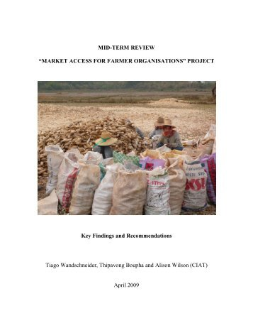 MID-TERM REVIEW - Internet Directory of NGOs in the Lao PDR