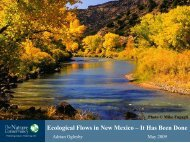 Ecological Flows in New Mexico – It Has Been Done