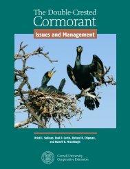 Cormorant - Wildlife Control Information