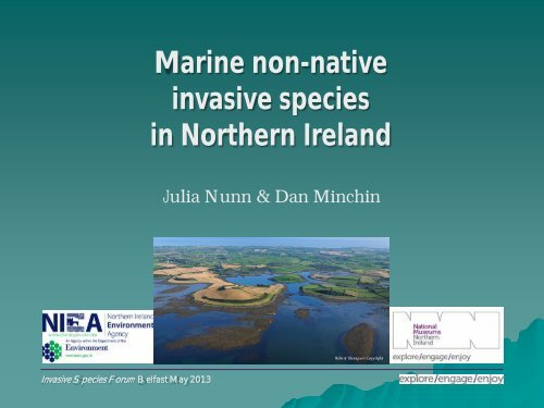 Marine non-native invasive species in Northern Ireland
