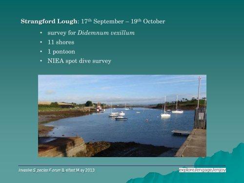 Marine non-native invasive species in Northern Ireland