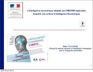 L'Intelligence économique adaptée aux PME/PMI régionales