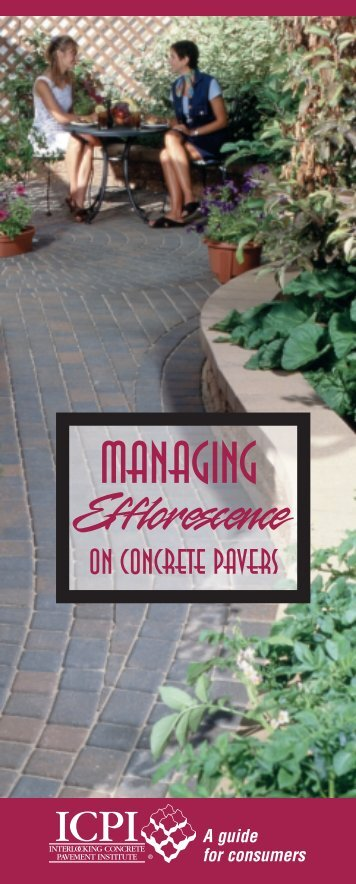 Frequently Asked Questions Regarding Efflorescence
