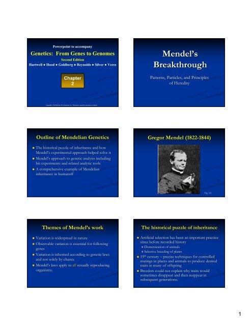 Mendel's Breakthrough