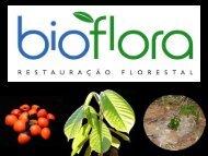 Restauração Florestal - SIGAM