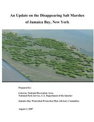 An Update on the Disappearing Salt Marshes of Jamaica Bay, New ...