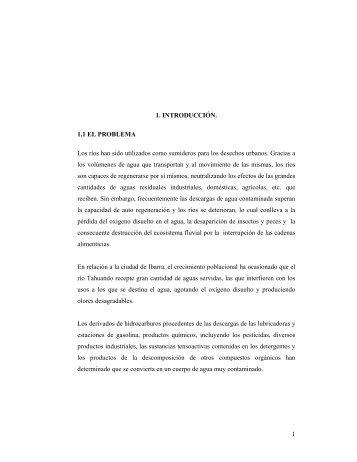 Tesis final.pdf - Repositorio UTN