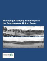 Managing Changing Landscapes in the Southwestern United States