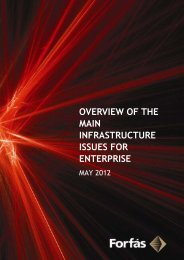 Overview of the Main Infrastructure Issues for Enterprise - Forfás