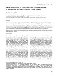 Effects of water stress on photosynthesis and nitrogen metabolism in ...