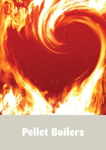 Stovesonline Extraflame Pellet brochure - Ecobuild Product Search