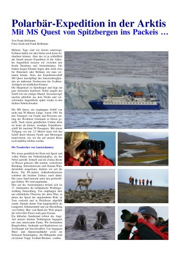 Polarbär-Expedition in der Arktis - Fotoundreisen.de