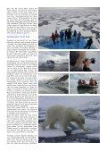 Polarbär-Expedition in der Arktis - Fotoundreisen.de - Seite 3