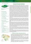 2013 metų darbo rinkos prognozė - Lietuvos darbo birža - Page 6