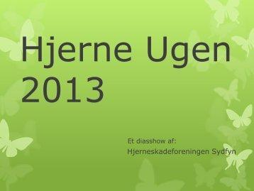 Hjerne Ugen 2013 - Hjerneskadeforeningen