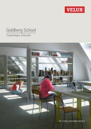 Guldberg School - Velux