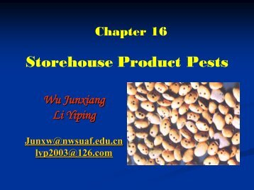 Storehouse Product Pests