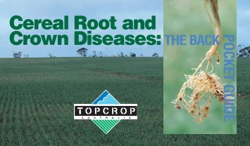 Cereal Root and Crown Disease