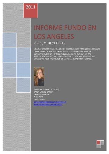 2-INFORME FUNDO EXTRANJEROS2.