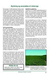 Dyrkning og anvendelse af vinterraps - Økologisk Rådgivning