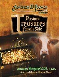 Anchor D BlAck Betty 703U - Bouchard Livestock International