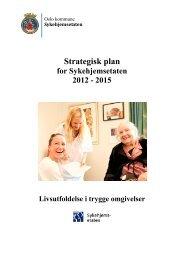 Strategisk plan for SYE 2012-2015 - Sykehjemsetaten