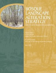 Bosque Landscape Alteration Strategy - New Mexico - Energy ...