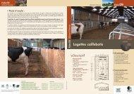 Logettes mixtes caillebotis - Chambres d'agriculture - Picardie