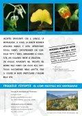 Fossili viventi: il cibo vegetale dei dinosauri - Page 2