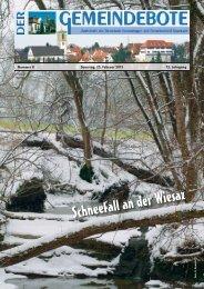 Ausgabe :Gomaringen 23.02.13.pdf - Gomaringer Verlag