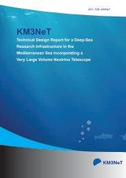 KM3NeT TDR (Technical Design Report)